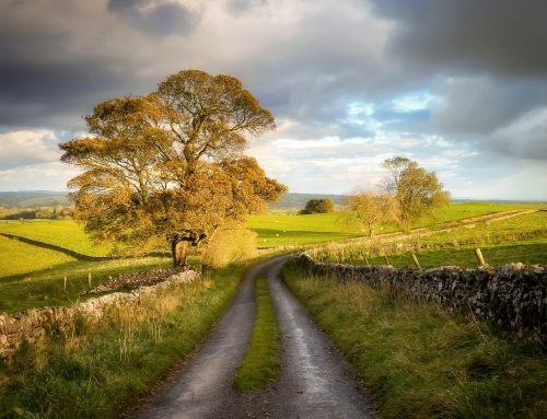 The Peak District and Why I Love It